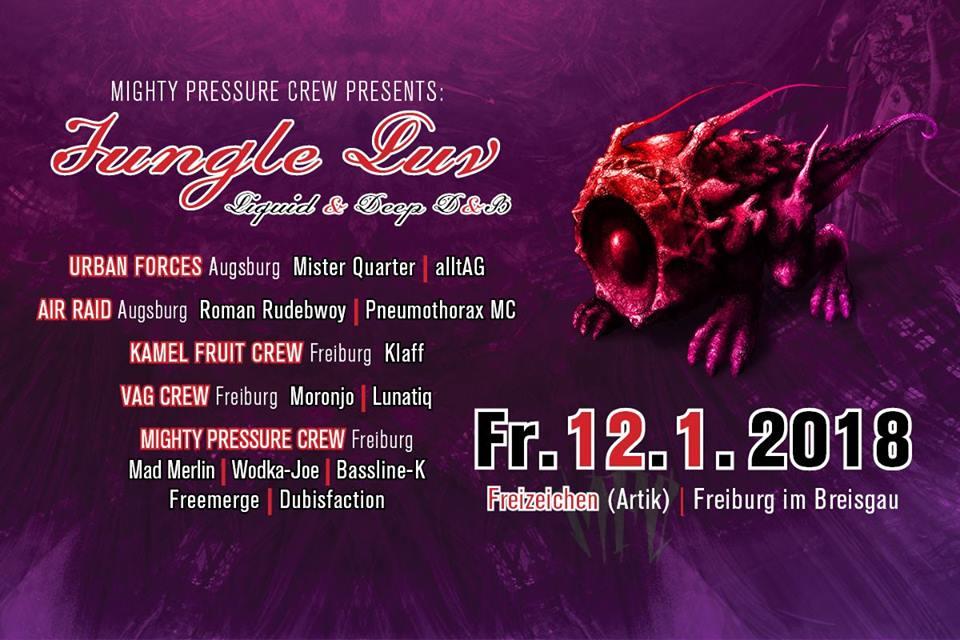 Jungle Luv | Liquid and Deep DnB | Freitag, 12.01.18