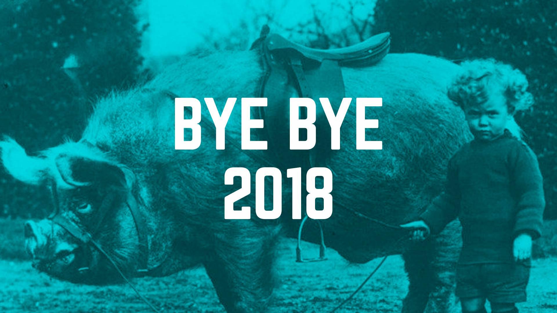 BYE BYE 2018 // wir ziehen um || 1.1.19